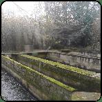 Moulin de bray - Pisciculture