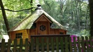 Kota Forêt
